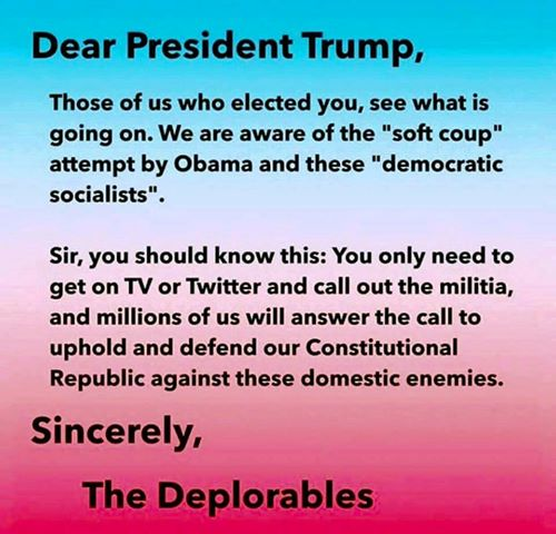 Dear President Trump, Those of us who elected you, see what is going on. We are aware of the 'soft coup' attempted by Obama and these 'democratic socialists'. Sir, you should know this: You only need to get on TV or Twitter and call out the militia, and millions of us will answer the call to uphold and defend our Constitutional Republic against these domestic enemies. Sincerely, The Deplorables